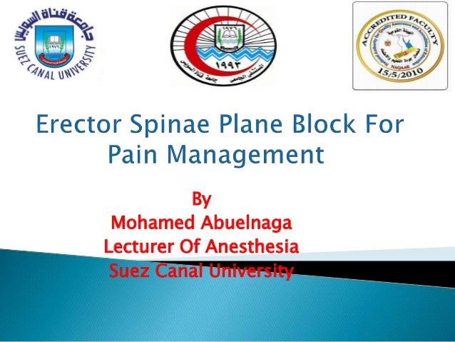 By Mohamed Abuelnaga Lecturer Of Anesthesia Suez Canal University