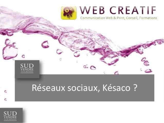 Réseaux sociaux, Késaco ?