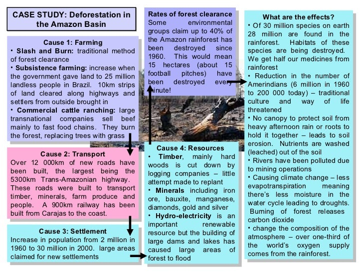 deforestation in malaysia case study gcse Tropical rainforest case study: because of the ecological changes deforestation causes more information for this case study can be found in 'tomorrow's.