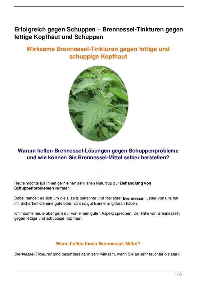 Erfolgreich gegen Schuppen – Brennessel-Tinkturen gegenfettige Kopfhaut und Schuppen      Wirksame Brennessel-Tinkturen ge...
