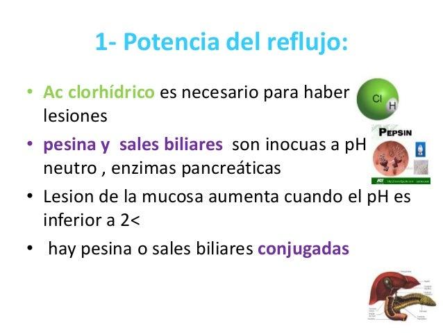 Erge con hernia hiatal sam - Alimentos prohibidos para la hernia de hiato ...