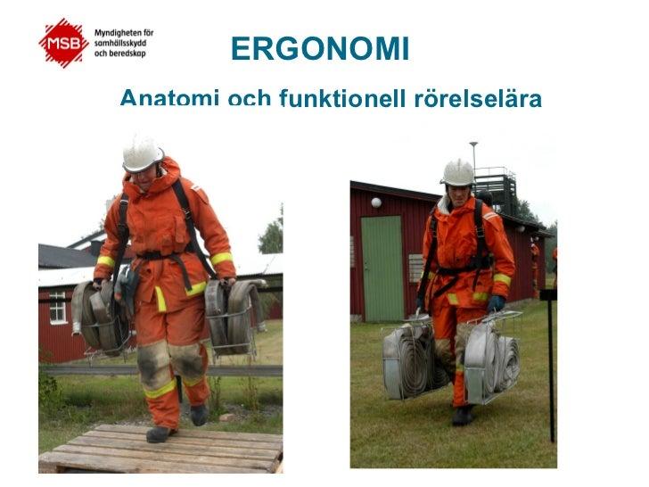 ERGONOMIAnatomi och funktionell rörelselära