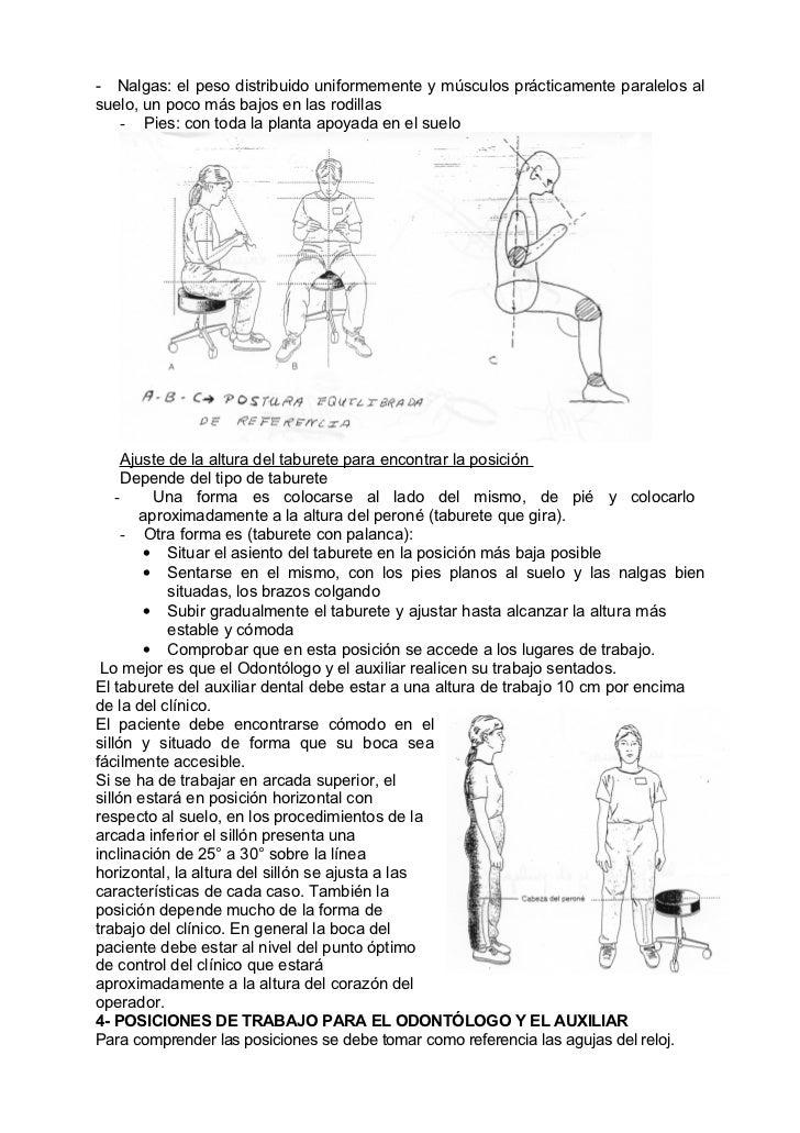 - Nalgas: el peso distribuido uniformemente y músculos prácticamente paralelos alsuelo, un poco más bajos en las rodillas ...