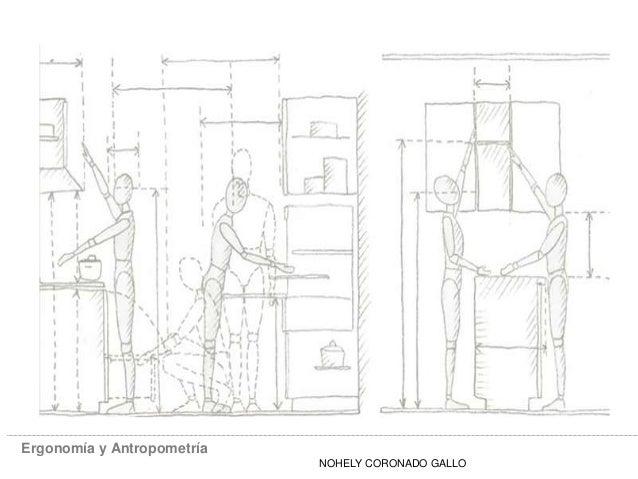 Ergonomía y Antropometría NOHELY CORONADO GALLO