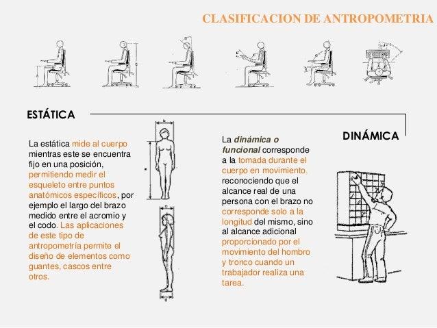 ergonomia y antropometria On antropometria estatica