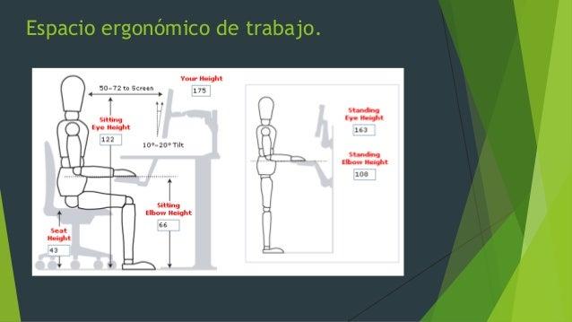 jackpot empresarial mexicano ergonom a On espacio de trabajo ergonomia