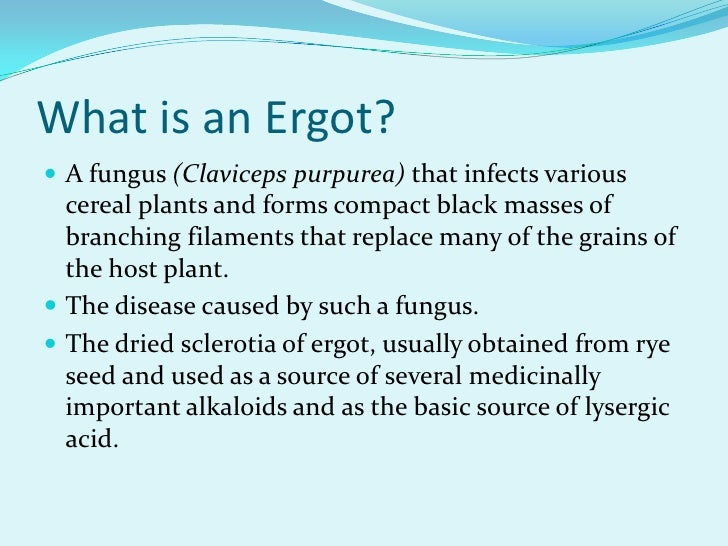 the diseases caused by ergot fungi worldwide