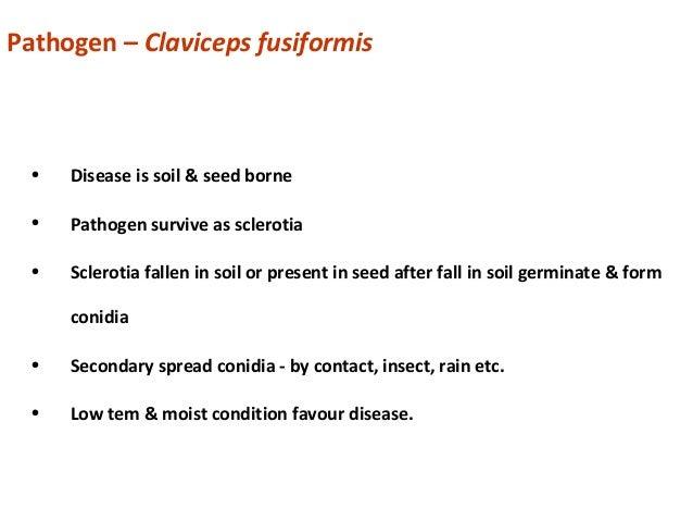 Systemic Position Kingdom – Mycota/ Fungi Division – Eumycota Sub division – Ascomycotina Class – Pyrenomycetes Order – Cl...