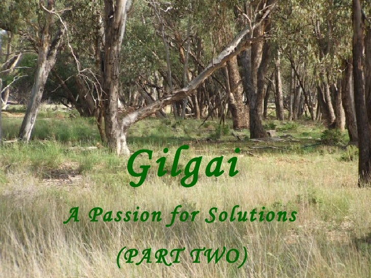 Gilgai A Passion for Solutions (PART TWO)