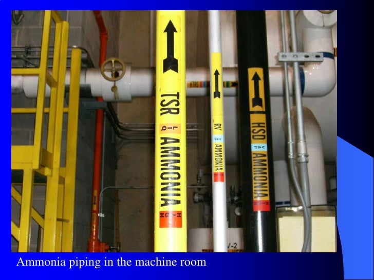 labeled ammonia piping in the machine room