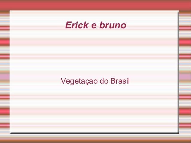 Erick e brunoVegetaçao do Brasil
