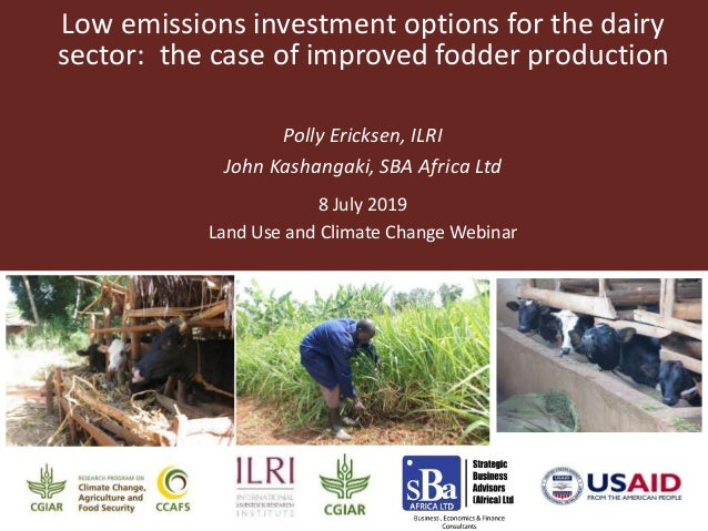 Low emissions investment options for the dairy sector: the case of improved fodder production Polly Ericksen, ILRI John Ka...
