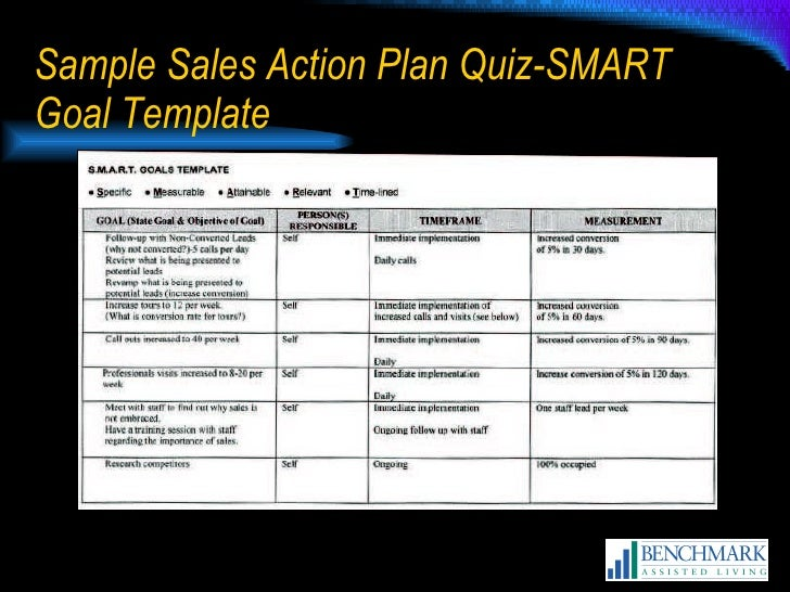 Sample Smart Action Plan One Example Business Goals And