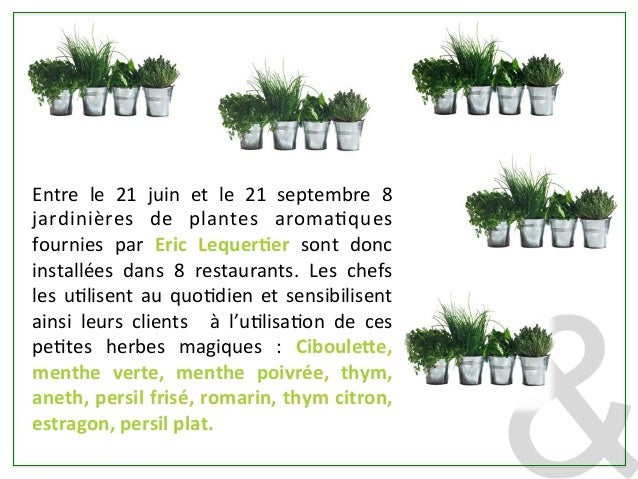Le jardin s invite au restaurant gr ce ric lequertier for Restaurant le jardin au moulleau