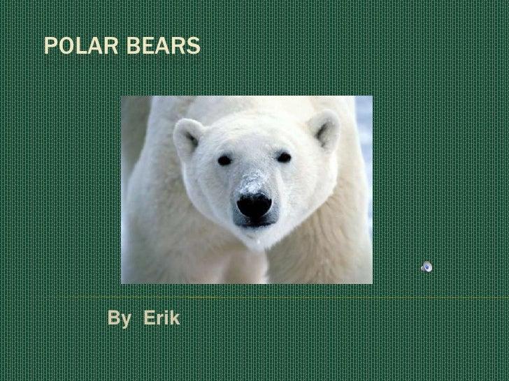 POLAR BEARS<br />By  Erik<br />