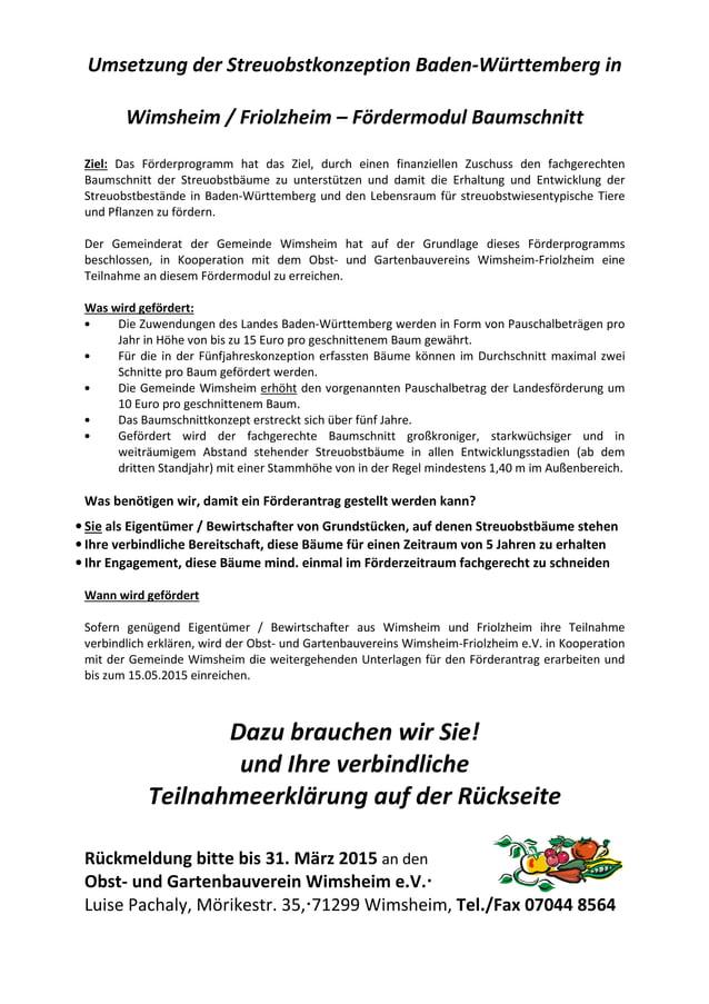 Umsetzung der Streuobstkonzeption Baden-Württemberg in Wimsheim / Friolzheim – Fördermodul Baumschnitt Ziel: Das Förderpro...