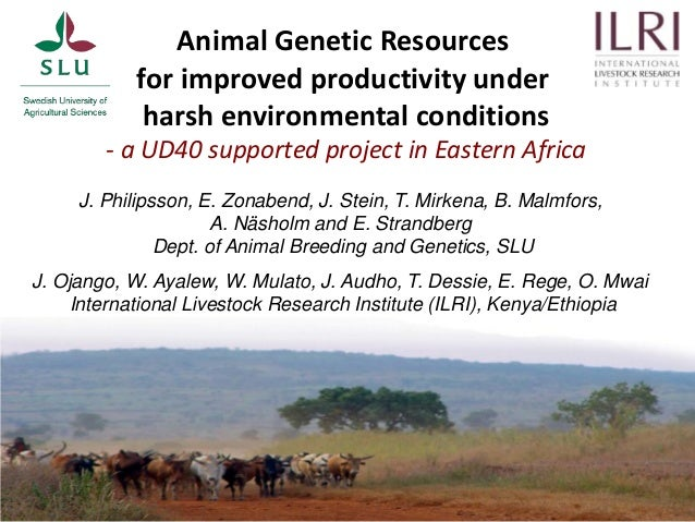 Animal Genetic Resources for improved productivity under harsh environmental conditions - a UD40 supported project in East...