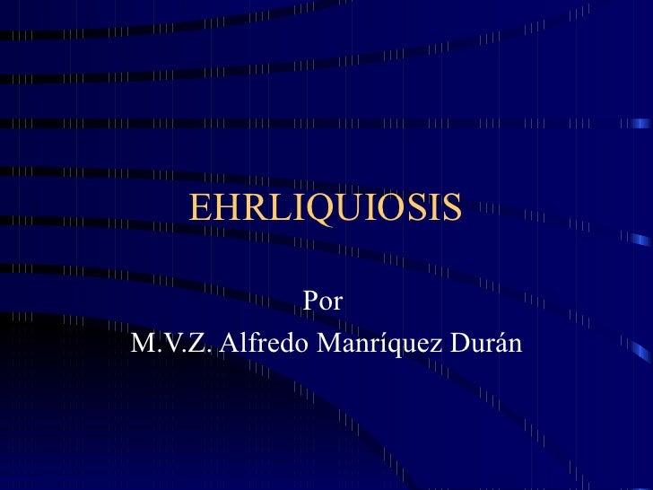 EHRLIQUIOSIS Por  M.V.Z. Alfredo Manríquez Durán