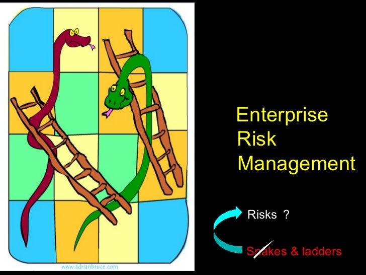 EnterpriseRiskManagementRisks ?Snakes & ladders1
