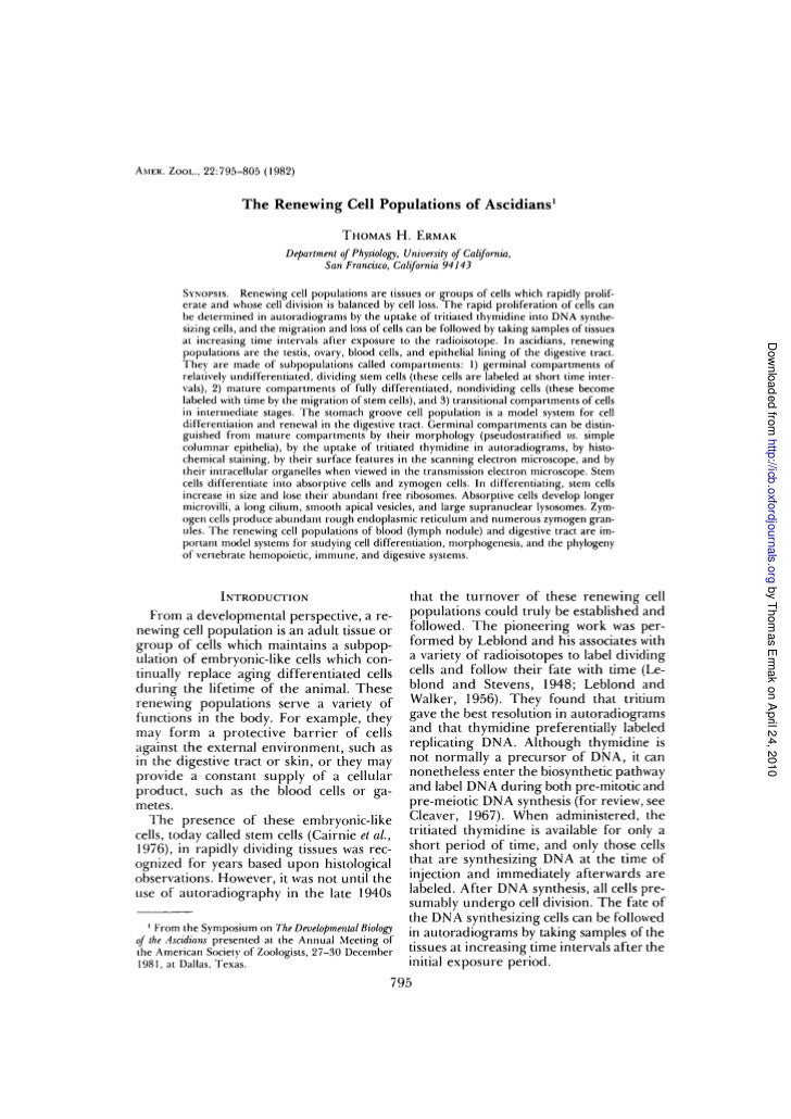 AMER. ZOOL., 22:795-805 (1982)                      The Renewing Cell Populations of Ascidians1                           ...
