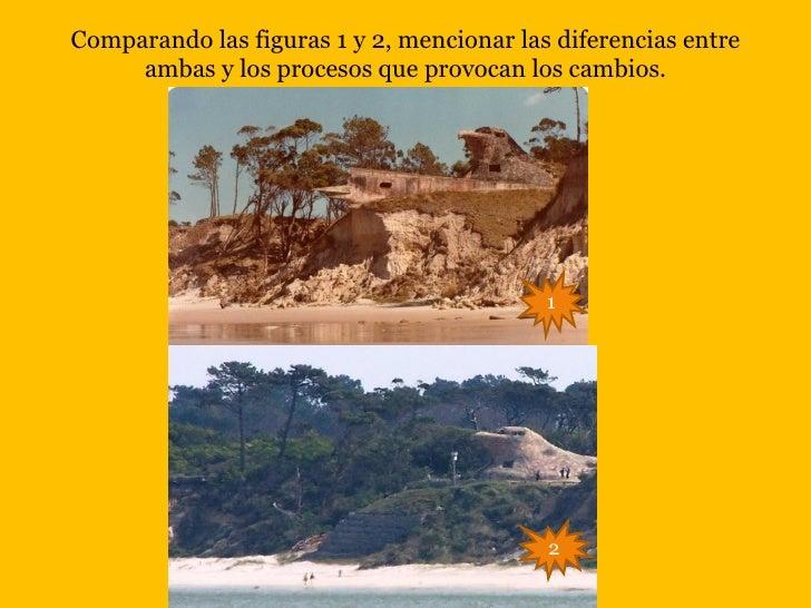 Comparando las figuras 1 y 2, mencionar las diferencias entre     ambas y los procesos que provocan los cambios.          ...
