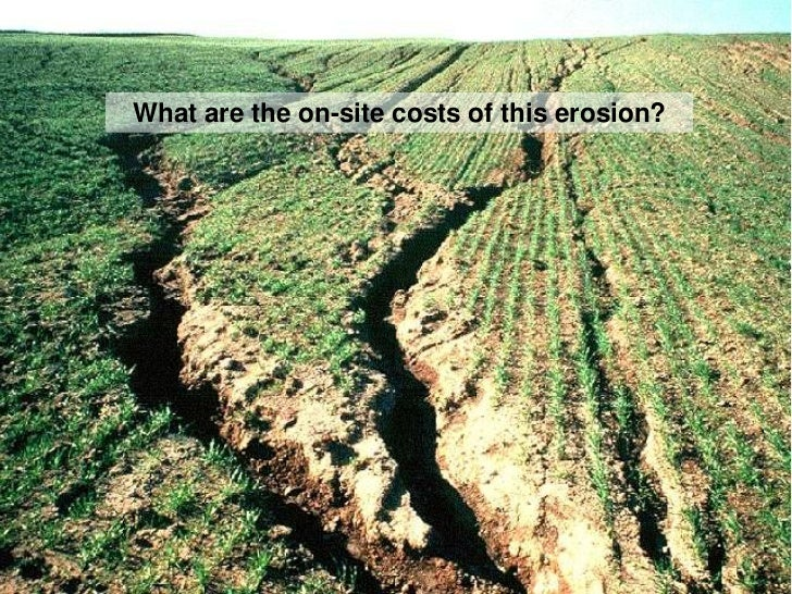 Essay on soil erosion causes effects and solutions of soil for Soil erosion in hindi