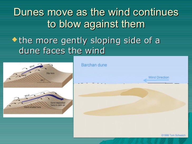wind is an important agent of deposition and transportation essay Sedimentary rocks weathering erosion transport  transport agent gravity and glaciers  festooned cross beds deposited by wind dune deposition by wind.