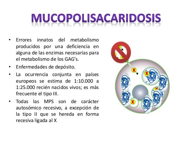 deficiencia sulfatasa esteroidea