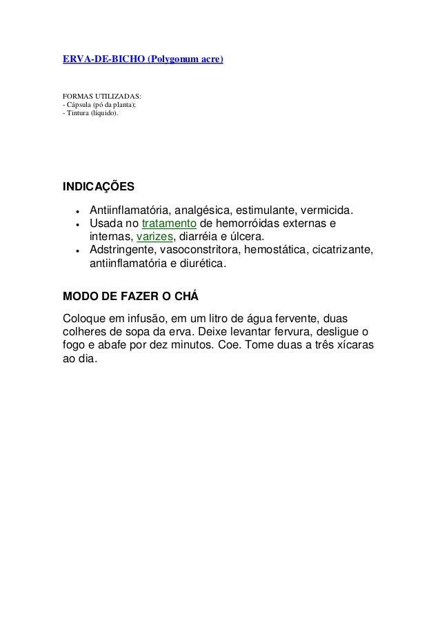 ERVA-DE-BICHO (Polygonum acre) FORMAS UTILIZADAS: - Cápsula (pó da planta); - Tintura (líquido). INDICAÇÕES  Antiinflamat...