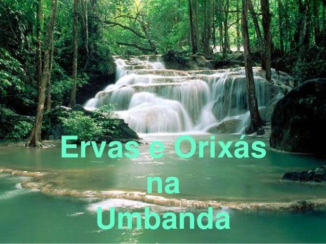 Ervas e Orixás na Umbanda