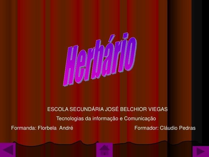 ESCOLA SECUNDÁRIA JOSÉ BELCHIOR VIEGAS                  Tecnologias da informação e Comunicação Formanda: Florbela André  ...