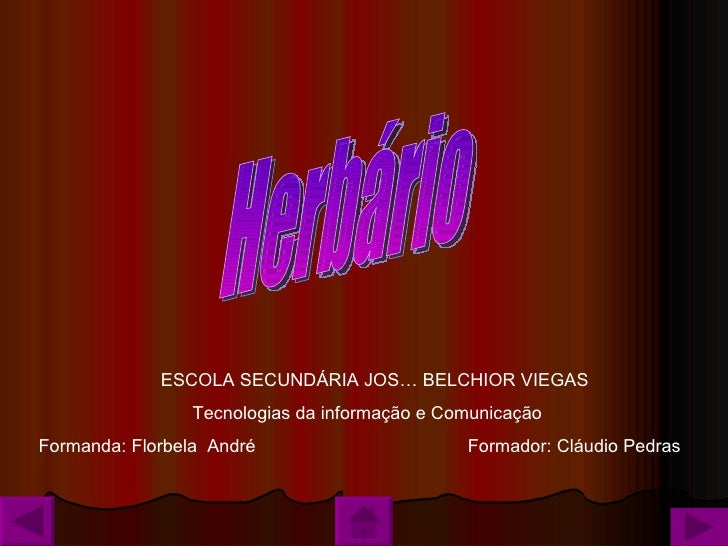 Herbário ESCOLA SECUNDÁRIA JOSÉ BELCHIOR VIEGAS Tecnologias da informação e Comunicação  Formanda: Florbela  André Formado...