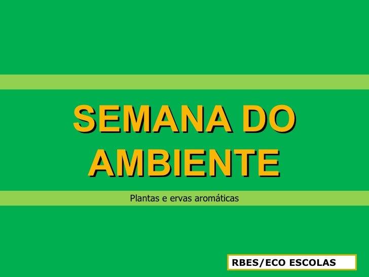 SEMANA DO AMBIENTE  Plantas e ervas aromáticas                          RBES/ECO ESCOLAS
