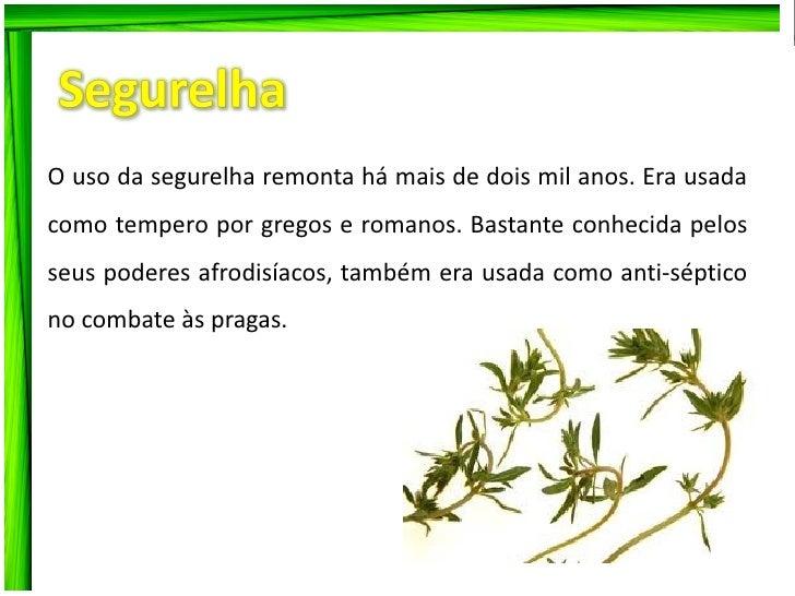 Ervas aromáticas  Slide 2