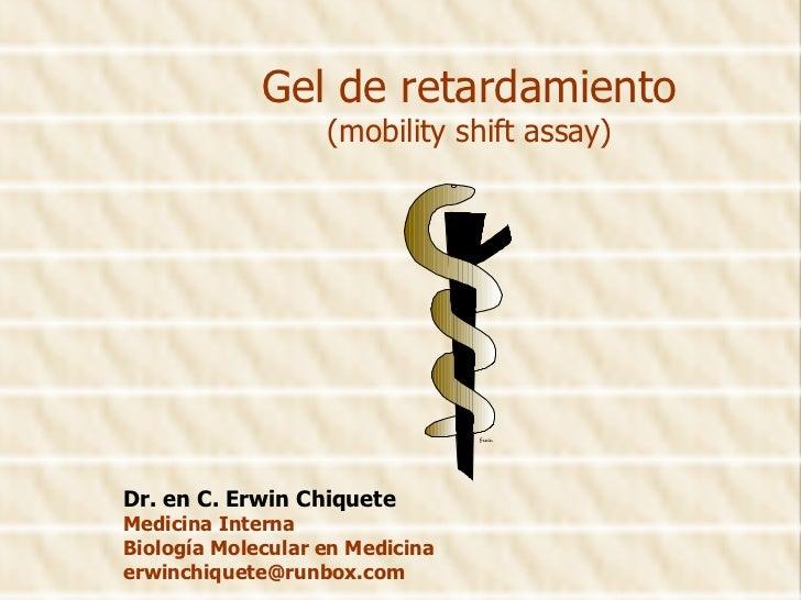 Gel de retardamiento (mobility shift assay) Dr. en C. Erwin Chiquete Medicina Interna Biología Molecular en Medicina [emai...