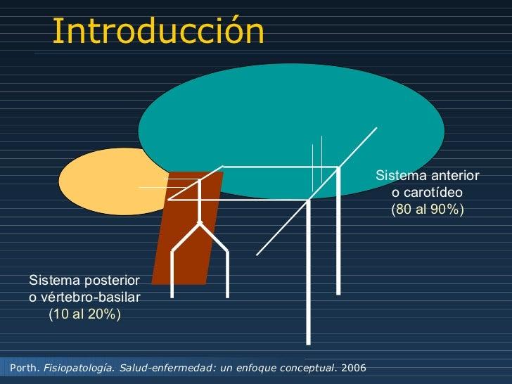 Introducción Sistema posterior o vértebro-basilar ( 10 al 20%) Sistema anterior o carotídeo ( 80 al 90%) Porth.  Fisiopato...