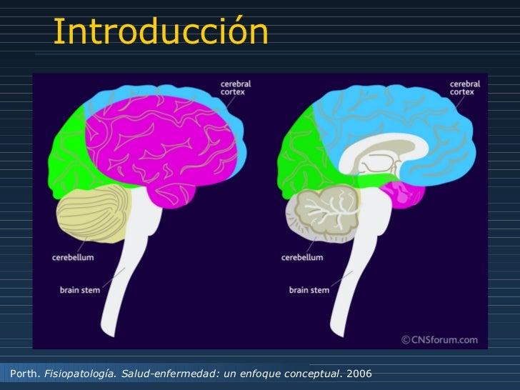 Introducción Porth.  Fisiopatología. Salud-enfermedad: un enfoque conceptual . 2006
