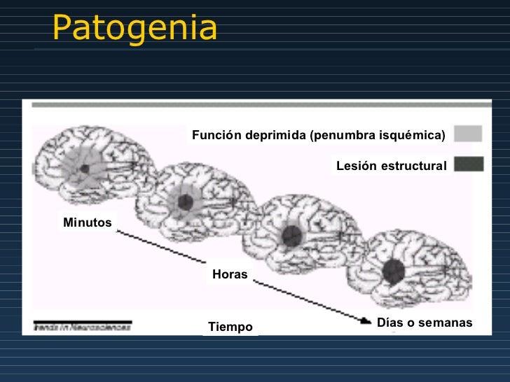 Patogenia Función deprimida (penumbra isquémica) Lesión estructural Minutos Horas Días o semanas Tiempo