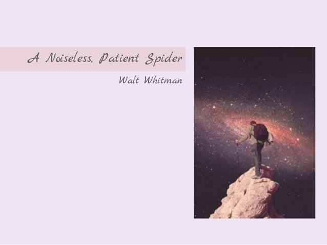 noiseless patient spider