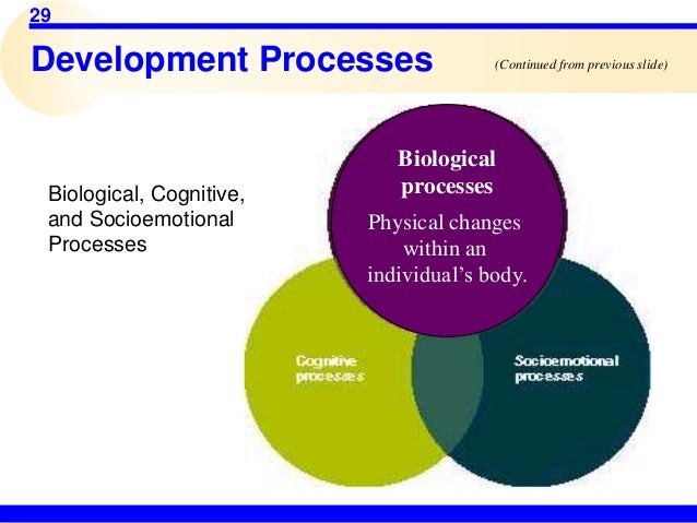 biological cognitive and psychosocial development During the prenatal period there are many biological factors biological factors that affect a childs development cognitive development in the new born.