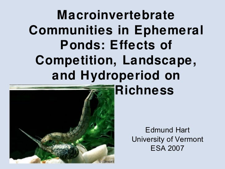 Macroinvertebrate Communities in Ephemeral Ponds: Effects of Competition, Landscape, and Hydroperiod on Species Richness E...