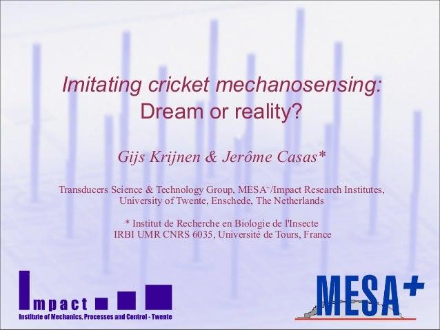 Imitating cricket mechanosensing:Dream or reality?Gijs Krijnen & Jerôme Casas*Transducers Science & Technology Group, MESA...