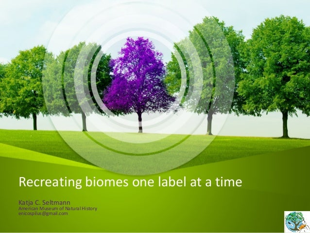 Recreating biomes one label at a time Katja C. Seltmann American Museum of Natural History enicospilus@gmail.com