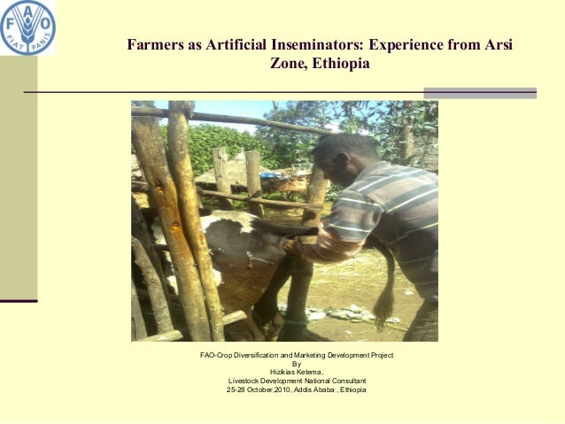 Farmers as Artificial Inseminators: Experience from Arsi Zone, Ethiopia FAO-Crop Diversification and Marketing Development...
