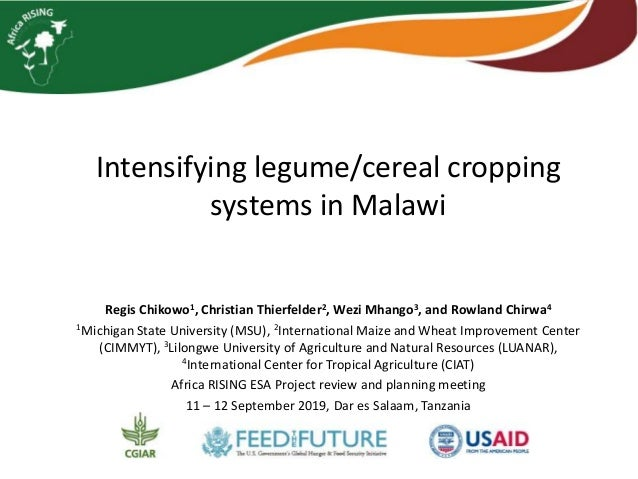 Intensifying legume/cereal cropping systems in Malawi Regis Chikowo1, Christian Thierfelder2, Wezi Mhango3, and Rowland Ch...