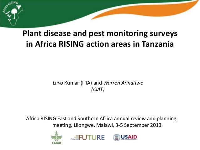 Plant disease and pest monitoring surveys in Africa RISING action areas in Tanzania Africa RISING East and Southern Africa...