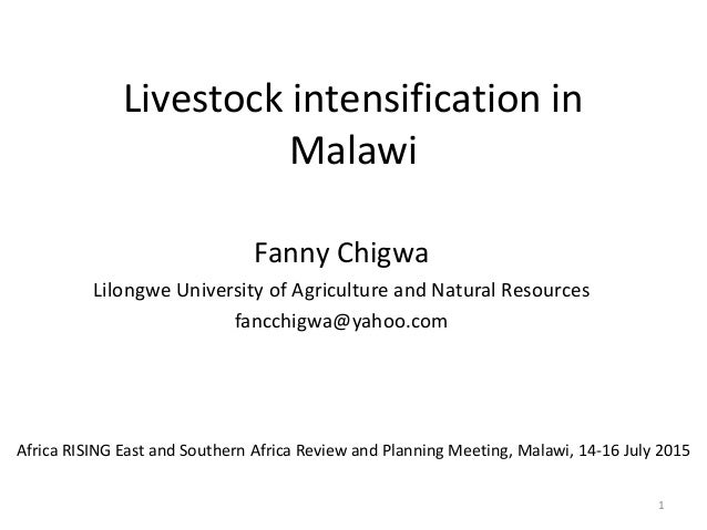 Livestock intensification in Malawi Fanny Chigwa Lilongwe University of Agriculture and Natural Resources fancchigwa@yahoo...