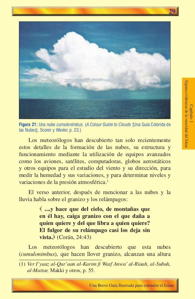 29 Figura 21: Una nube cumulonimbus. (A Colour Guide to Clouds [Una Guía Colorida de las Nubes], Scorer y Wexler, p. 23.) ...