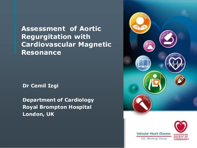 Assessment of Aortic Regurgitation with Cardiovascular Magnetic Resonance  Dr Cemil Izgi Department of Cardiology Royal Br...