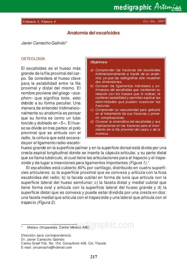 Moderno Abc Ayuda A Los Estudiantes De La Anatomía Recuerdo Foto ...